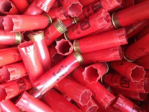 Empty Shotgun Shell Hulls